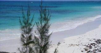 Ile Grand Bahama